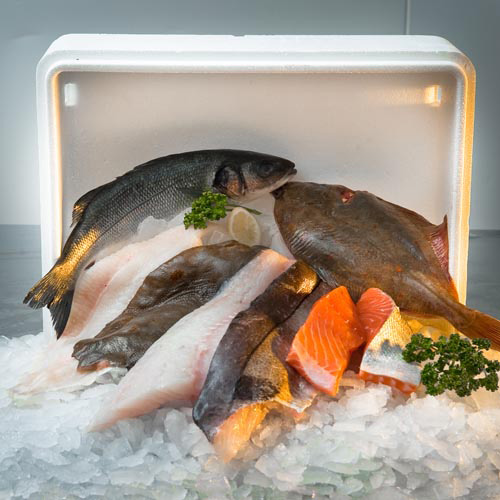 Paddy 39 s wet fish box 10 portions paddys for Is a fish wet