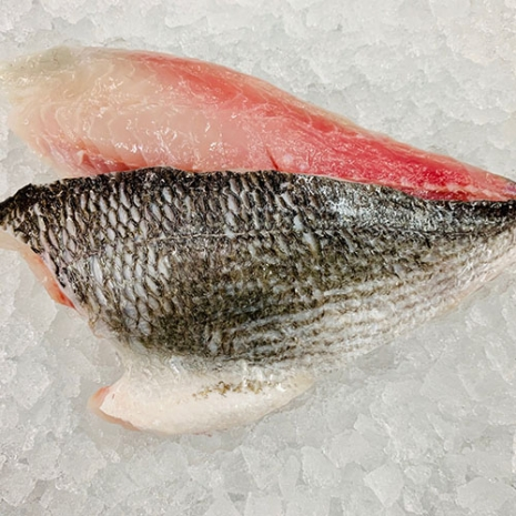 Double Seabream Fillet