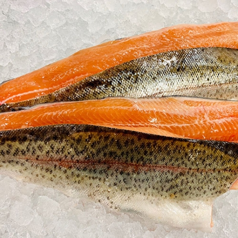Trout Filleted (4x fillets)