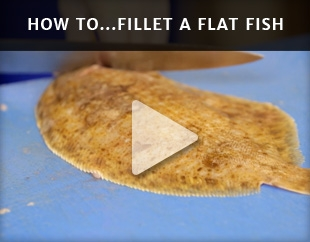 How To Fillet A Flat Fish